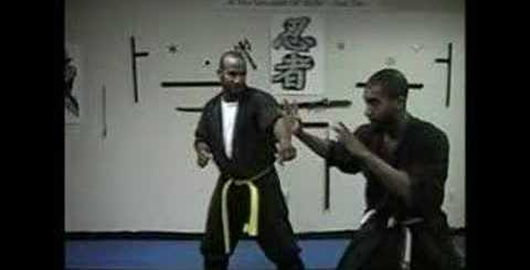 Explaining Ninjutsu