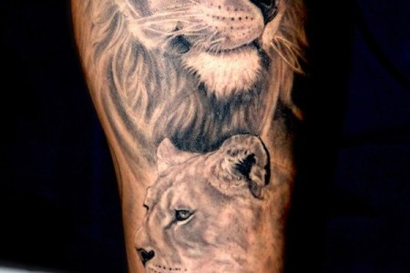 lion tattoo on arm shoulder 600x868