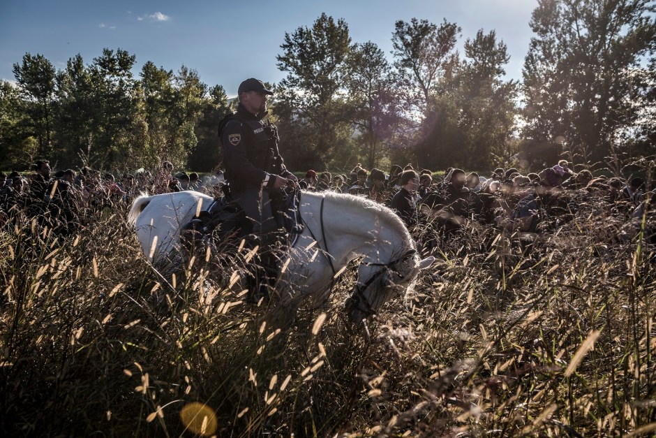 7 - A Slovenian police officer on horseback escorted migrants after they crossed from Croatia.