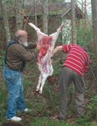 Skinning the animal real passover