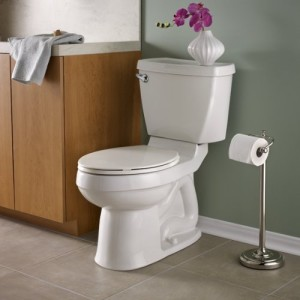 Image result for best toilet reviews