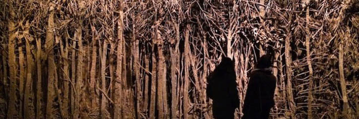ボール紙で作られた深く暗い森林