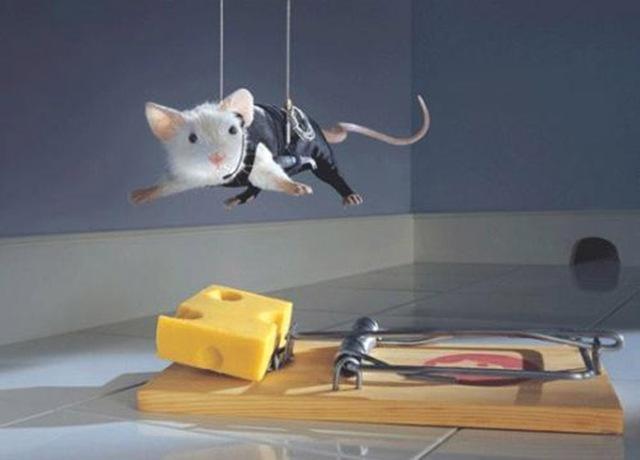 trampa-para-ratones