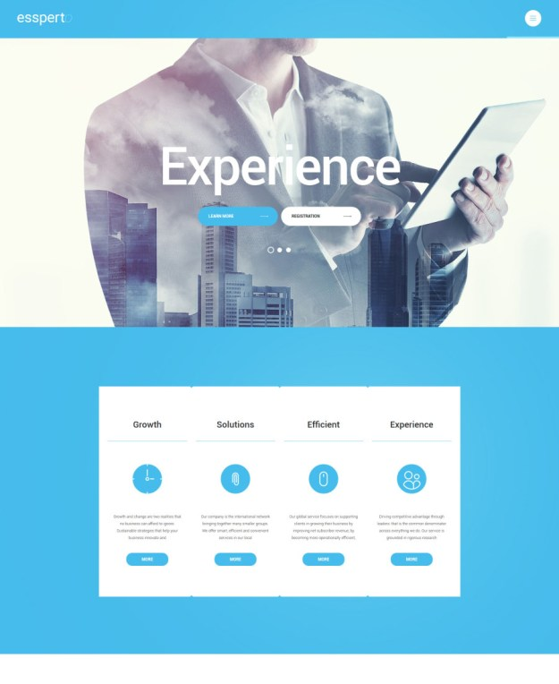 30-responsive WordPress themes
