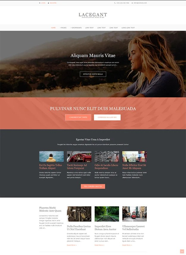 Lacegant - free Website Template
