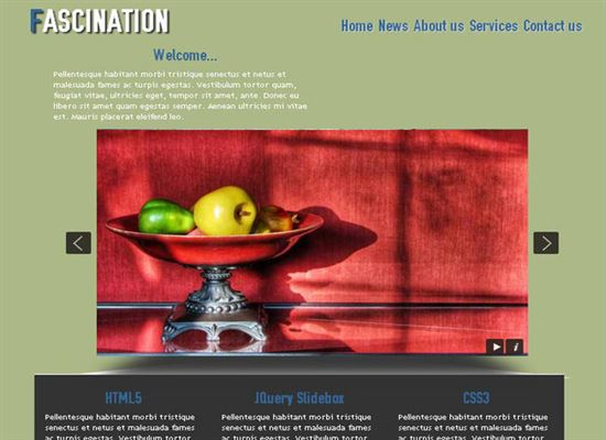 Fascination HTML5 and CSS3 Template