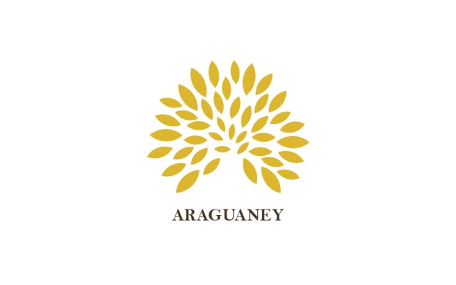Logotipo da Araguaney made by Webexperts