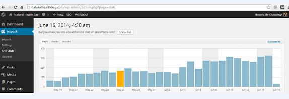 Screenshot: Ife's traffic stats