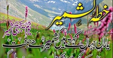 Yaum e Yakjehti e Kashmir Day 5th February 2016 Facebook Photos