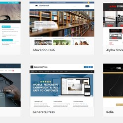 Choosing you wordpress theme