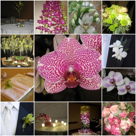 Beautiful Orchids used various ways