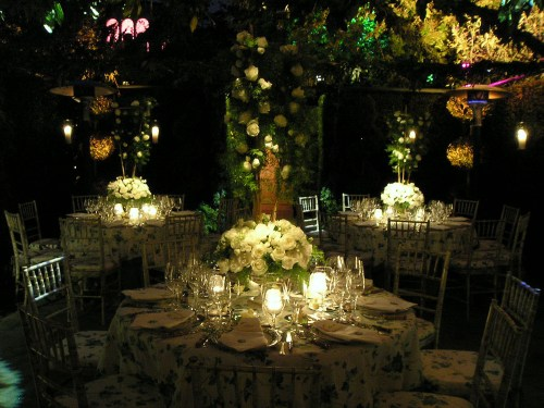 Pin Spots Light up A Garden Wedding