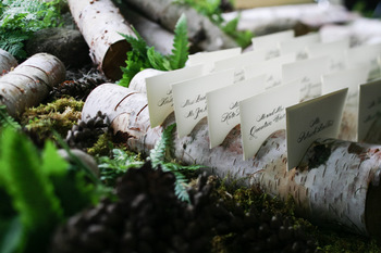 Birch Log Escort Cards  Michelle Rago