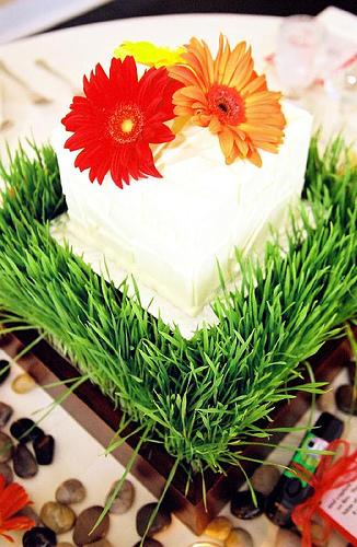 Centerpiec cake with gerber daisies