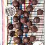 Chocolate Muffins 1