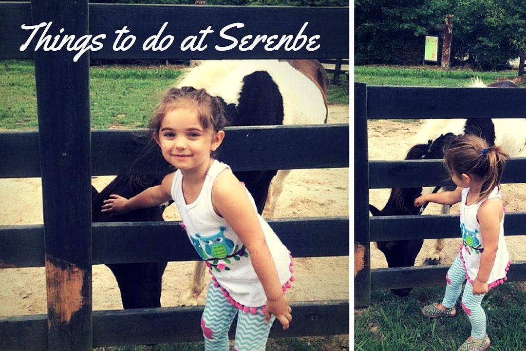 things to do at serebe