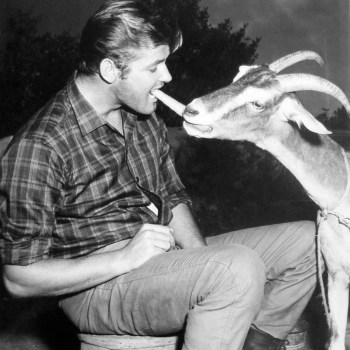 Roger Moore doing something with a goat…