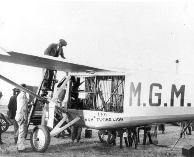 Leo the MGM Lion's plane crash