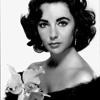 10 Things You Didn't Know About Elizabeth Taylor