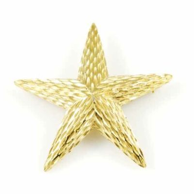 vintage 1960s gold star brooch