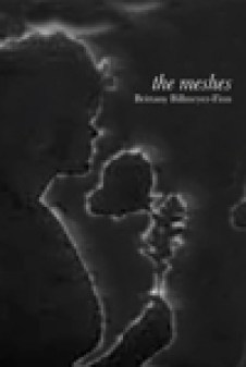 the meshes cover