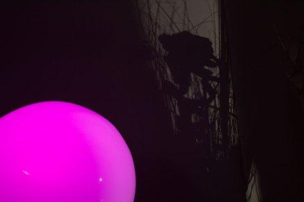 Pink, das Spiel mit dem Farbwechsler