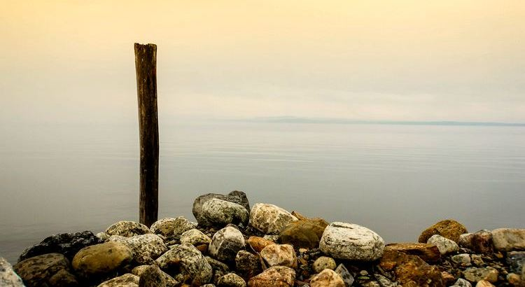 Wenn ihr einen Stein werft, wird er euch von hinten wieder treffen – weil die Erde rund ist. - Zitat von Rabindranath Tagore
