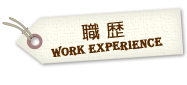 work-experience2