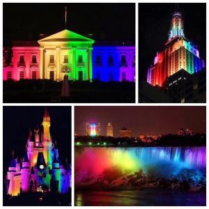 love wins rainbows