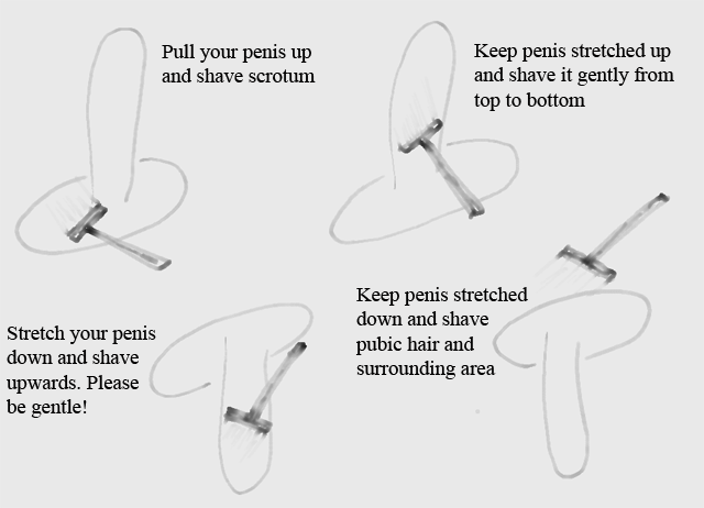 How to shave your male pubic area