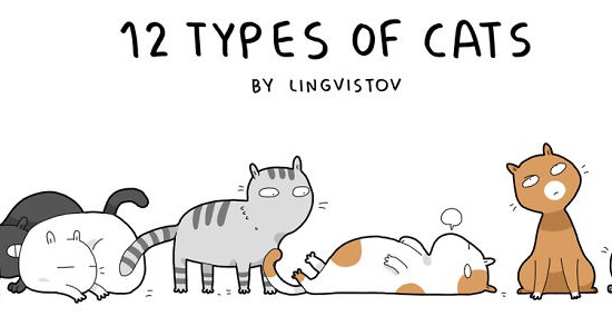 12 Types Of Cats