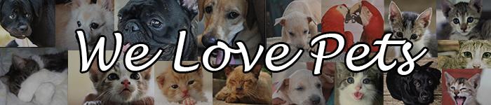 welovepets.com: Your pet's entertainment center.