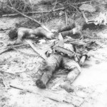 Kriegstagebuch 24. Mai 1945