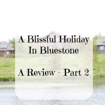 bluestone review 2