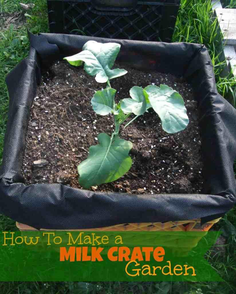Milk Crate Garden