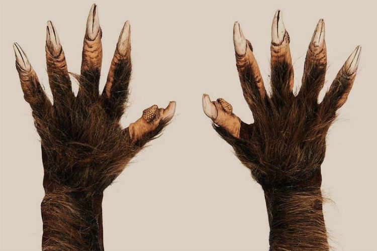 Zagone Werewolf Gloves