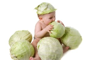 cabbage-baby-450