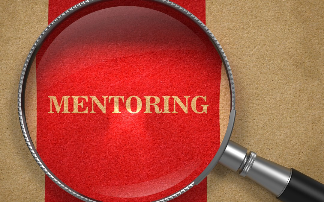 What to look for in a Mentor
