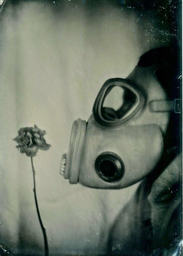 AAThe-last-flower1