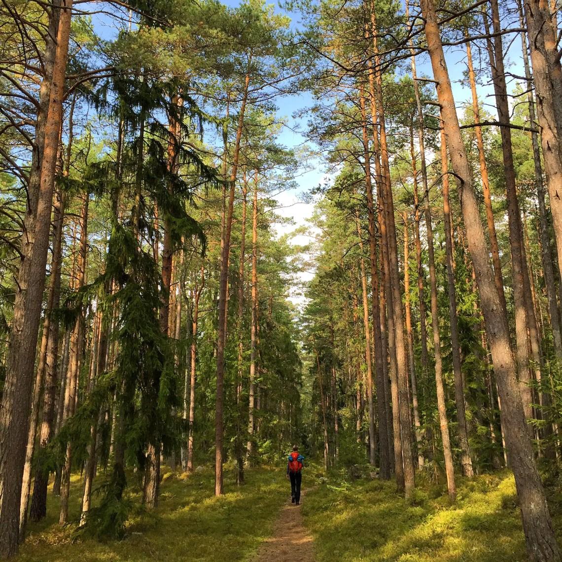 estland lahemaa nationalpark
