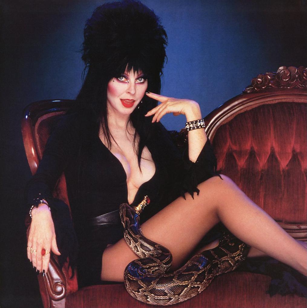 Se lembra de Elvira, a rainha das trevas Veja como ela está hoje em dia!