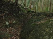 われらがWFR ★ 早稲田大学山岳サイクリング部動画日記-高水(12)2009/7/5