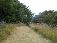 $われらがWFR ★ 早稲田大学山岳サイクリング部動画日記-二日目一回目下りスタート地点