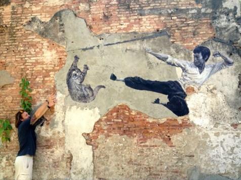 Bruce Lee Kicks Cat