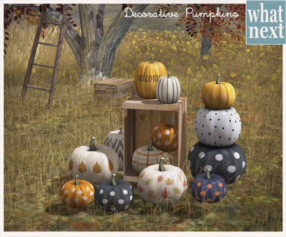 {what next} Decorative Pumpkins For Fifty Linden Friday 800