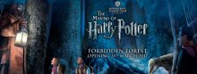 WARNER BROS. STUDIO TOUR LONDON – THE MAKING OF HARRY POTTER OPENS NEW FORBIDDEN FOREST EXPANSION