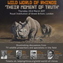 Wild World of Rhinos – Their Moment of Truth