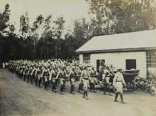 Chasing the Lion: The First World War in East Africa