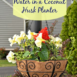 How to Conserve Water When Using Hanging Basket Liners