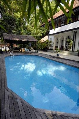 tropical backyard pool